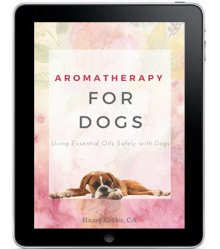 Aromatherapy Recipes for Dogs