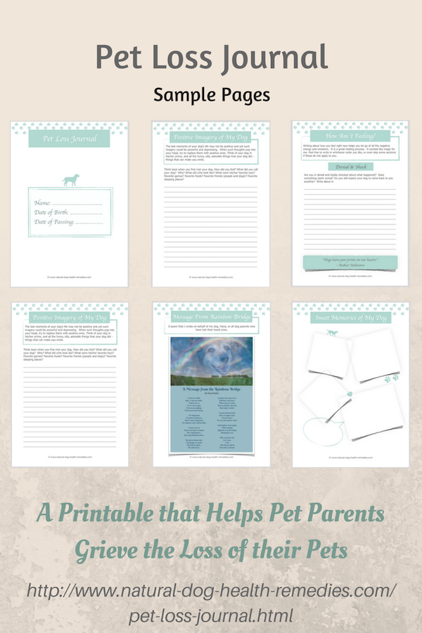 Pet Loss Journal