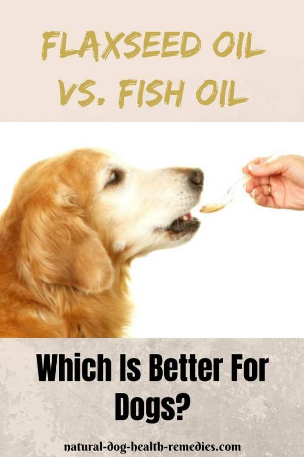 Fish Oil vs. Flaxeed Oil for Dogs