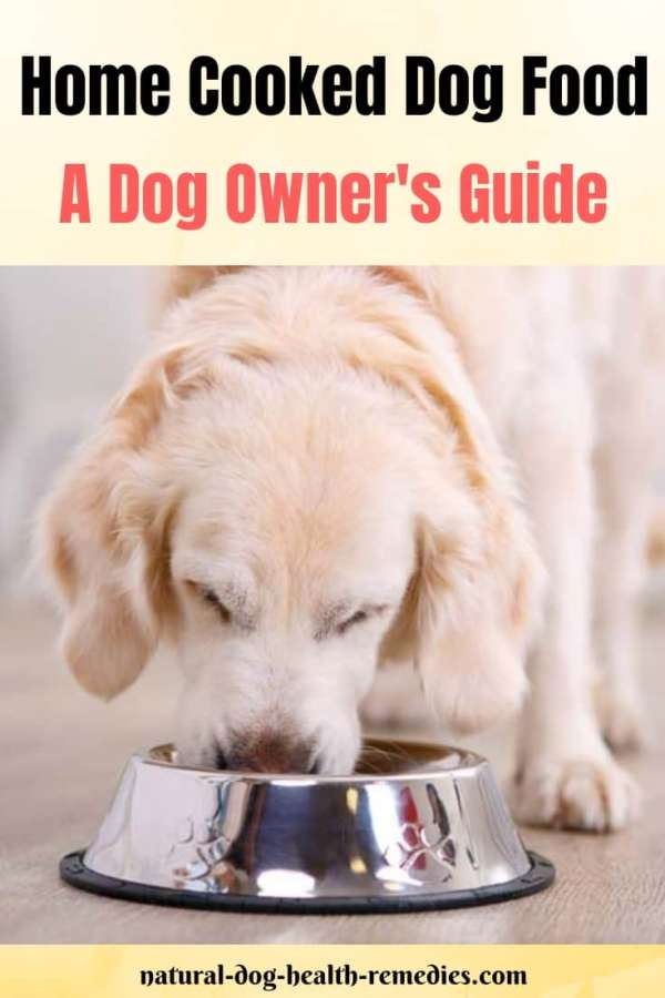 Dog Owner's Guide to Home Cooked Dog Food