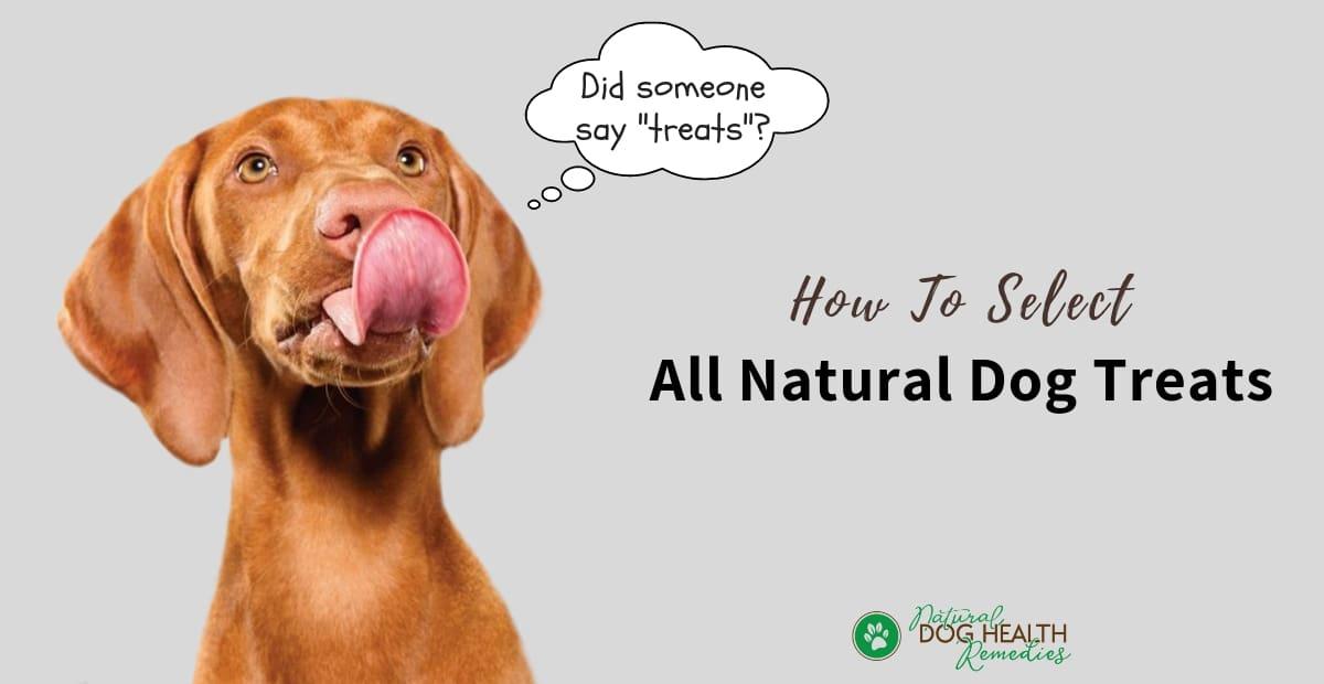 All Natural Dog Treat