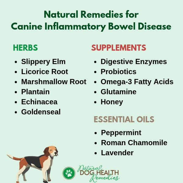 All Natural Treatment For Dog With Inflammatory Bowel Disease