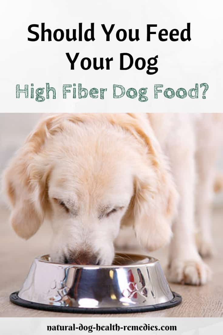 High Fiber Dog Food