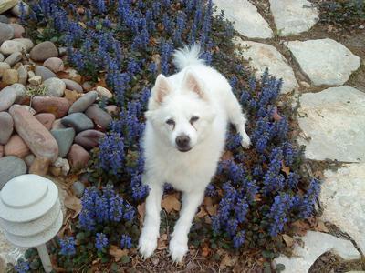 Casper, a few months ago