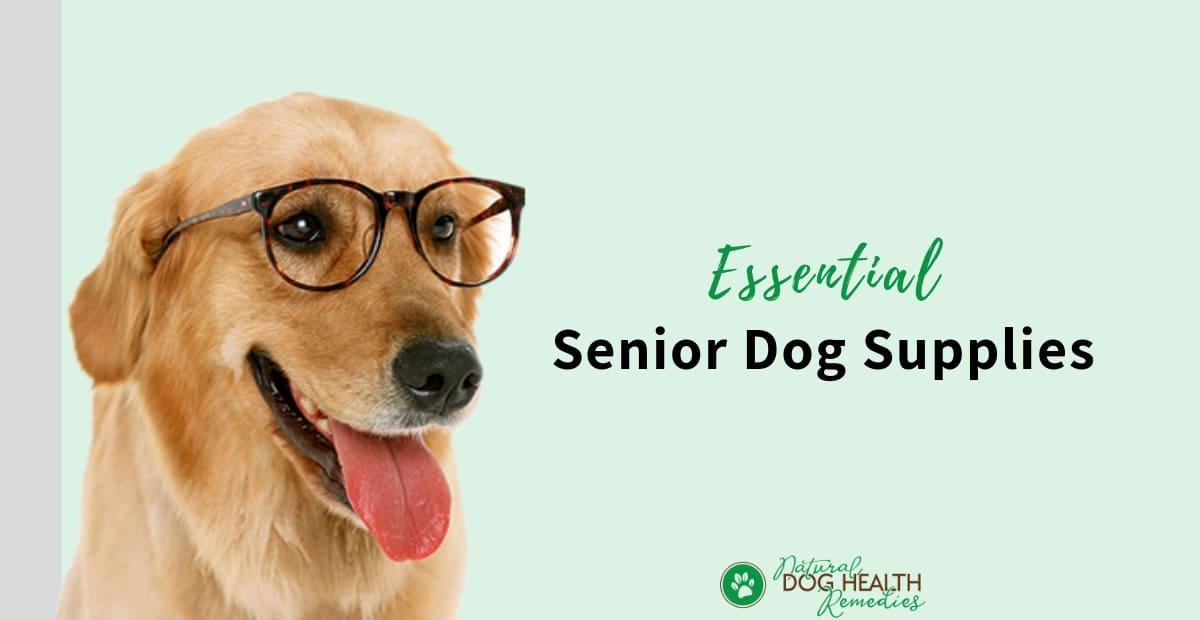 Senior Dog Supplies