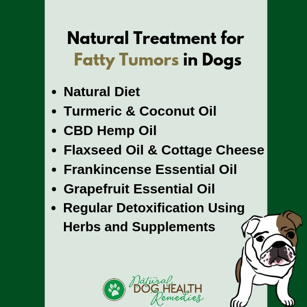 How To Shrink Canine Fatty Tumors