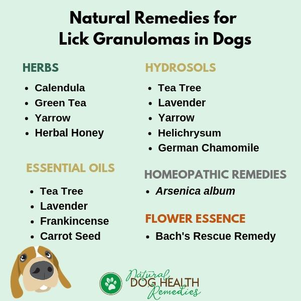 Natural Remedies for Lick Granulomas