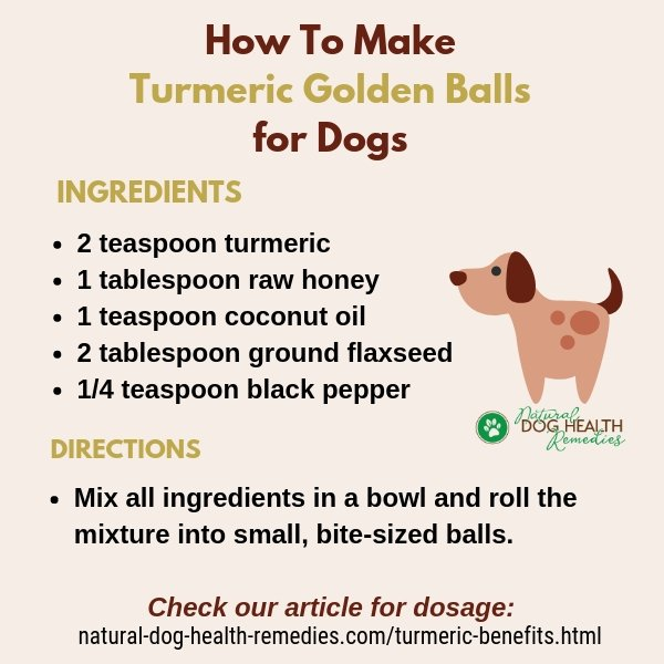 How To Make Turmeric Golden Balls for Dogs